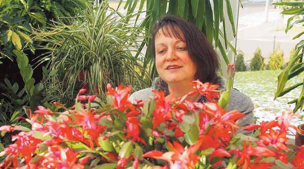 Blütenpracht im Wintergarten, Maria Prüfer
